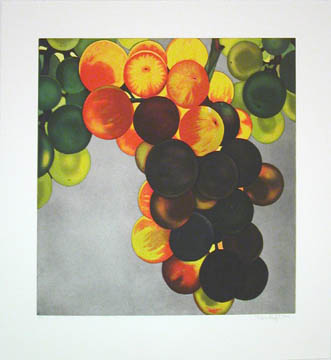 Grapes 2005 Etching and aquatint on Zerkall-Bü...