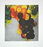 Grapes 2005 Etching and aquatint on Zerkall-Bü...
