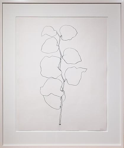 Ellsworth Kelly (b. 1923) Briar, 1960 Graphite on...