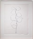 Ellsworth Kelly (b. 1923) Briar, 1960 Graphite on...