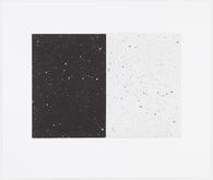 Vija Celmins, Black And White Diptych, 2010, 4-pla...